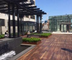 Yonge Eglinton Centre rooftop garden