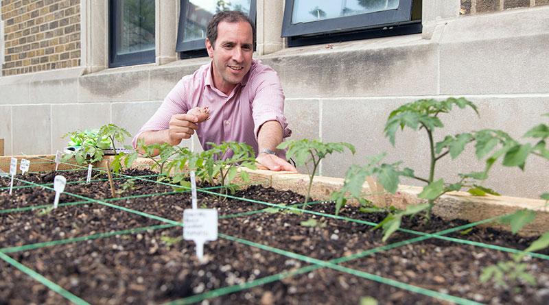 Learning garden inspected