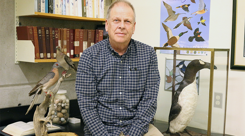 ROM collection of extinct birds