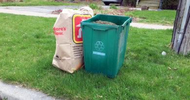 yard waste by the curb