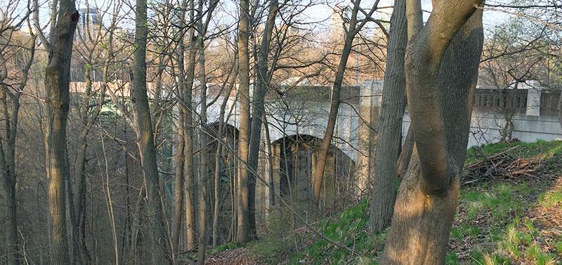 Glen Road bridge over homeless encampment