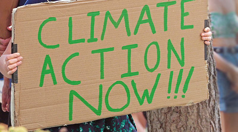 Climate action now demonstrator