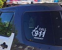 police car thumbnail