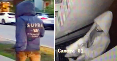 Images of man sought for Yorkville break-ins