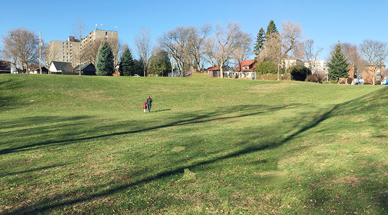 Donora Park tobogganing hill