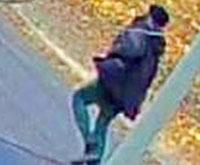 assault suspect header