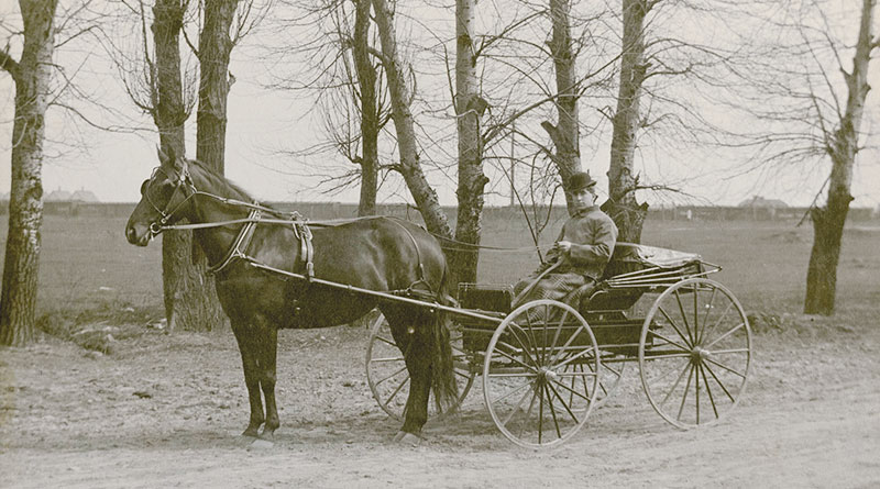 George Francis in buggy