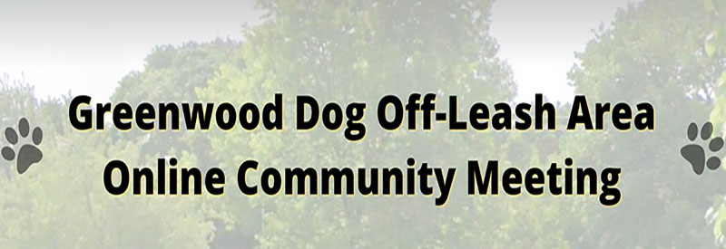 off-leash meeting header