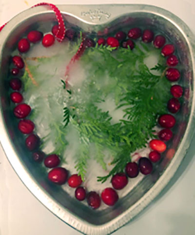 ice-hearts-carolyn-bennett