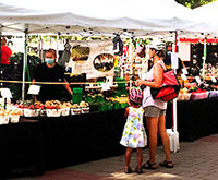 East York Farmers' Market thumbnail