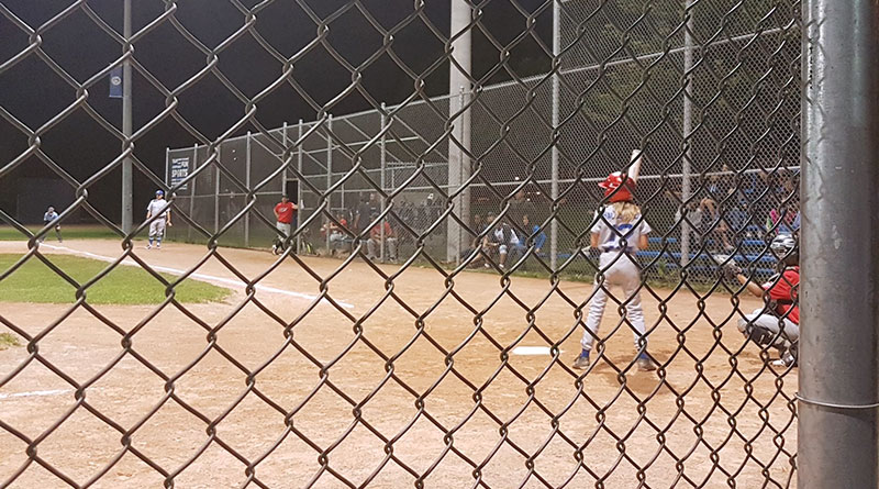 Little league picture through fence for community sport story
