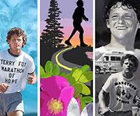 Terry Fox murals thumbnail